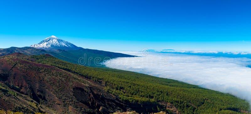 Панорамный взгляд на El Teide и национальном парке в Тенерифе стоковое фото rf