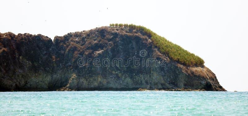 Панорамный взгляд пляжа национального парка Манюэля Антонио в Коста-Рика, большинств красивых пляжах в мире, серфер приставает к  стоковые фотографии rf