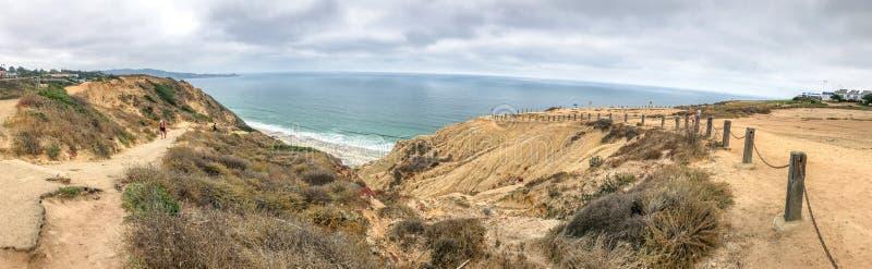 Панорамный взгляд сосен Torrey парка штата, Сан-Диего, США стоковые фотографии rf