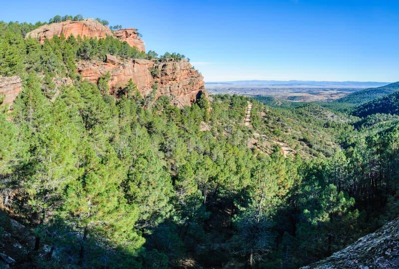 Панорамный взгляд в природном парке Pinares del Rodeno, Испании стоковые фото