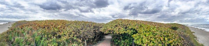 Панорамный взгляд грозы причаливая побережью, Флориде стоковое фото