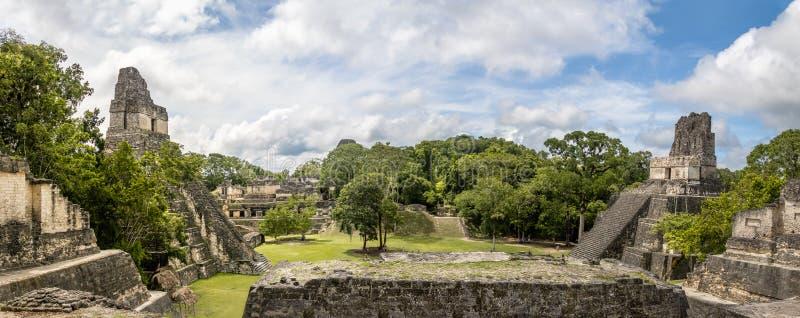 Панорамный взгляд майяских висков площади Gran или мэра площади на национальном парке Tikal - Гватемале стоковые изображения rf