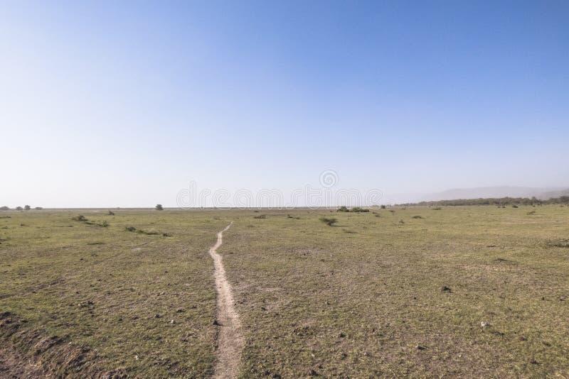 Панорамный взгляд озера Manyara национальный парк стоковые фотографии rf
