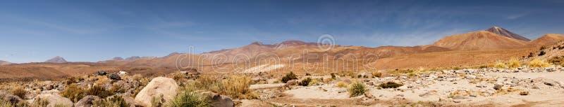 Панорамный взгляд пустыни Atacama, Чили стоковая фотография rf