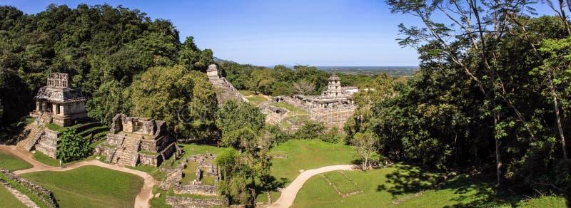 Панорамный взгляд руин Palenque майяских, Чьяпас, Мексика стоковое фото