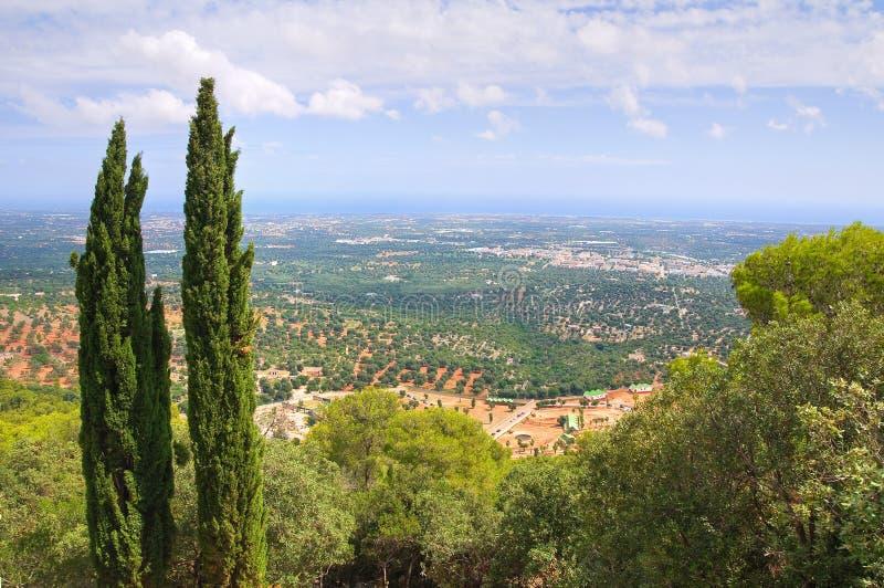 Панорамный взгляд Fasano Апулия Италия стоковое изображение rf