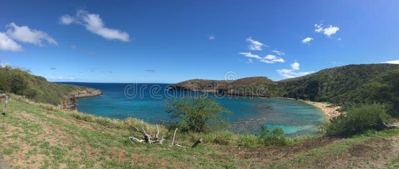 Панорамный вид залива Гаваи Hanauma травы и океана стоковое изображение rf