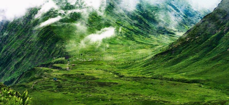 Панорамный вид зеленой долины и гор стоковое фото rf