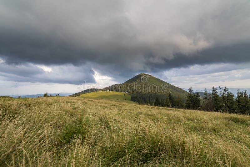 Панорамный вид зеленой травянистой долины, сосен и сельских небольших крестьянских хижин на ноге далекой древообразной горы под т стоковая фотография