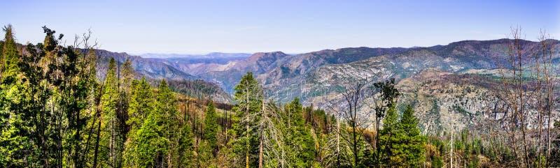 Панорамный вид областей национального парка Yosemite и Mariposa County, Калифорния, поврежденной огнем Ferguson летом 2018 стоковое фото