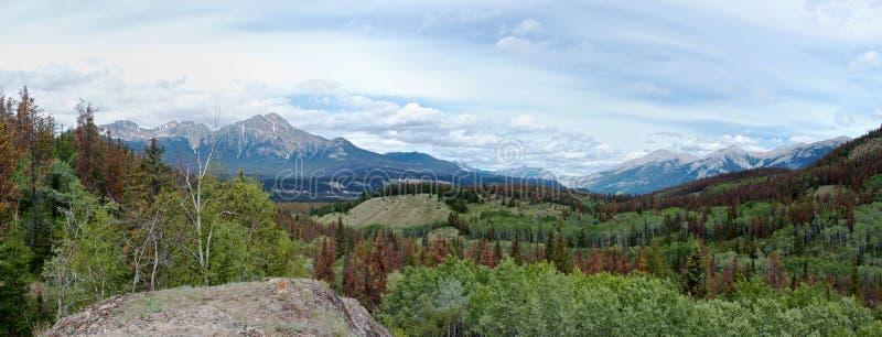 Панорамный вид скалистых гор стоковые фотографии rf