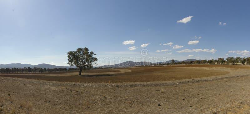 панорамный вид сухого, пылевоздушный, сельскохозяйственные угодья засухи пораженные неурожайные стоковое изображение