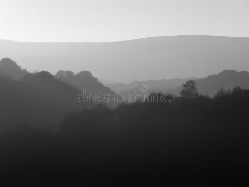Панорамный вид туманным покрытого деревом ландшафта горы с холмами в силуэте в различных тенях серого стоковые изображения rf