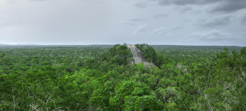 Панорамный висок 1 в Calakmul, Кампече Майя стоковая фотография