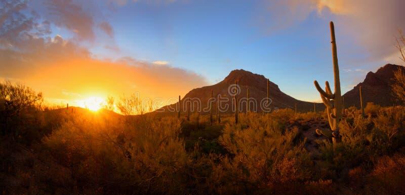Панорамный заход солнца пустыни стоковая фотография rf