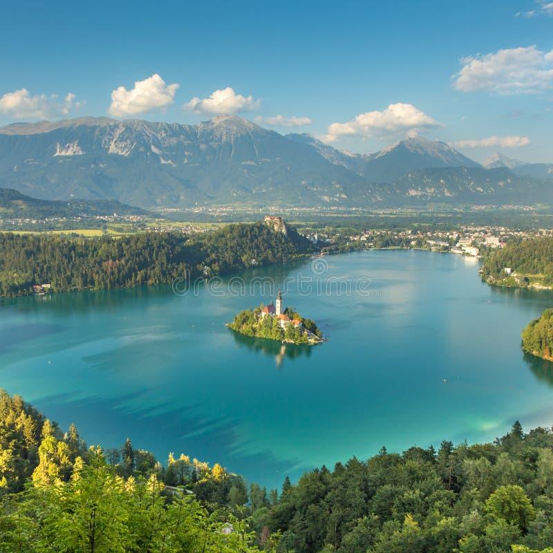 Панорамный кровоточенный вид на озеро, Словения стоковое изображение