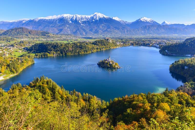Панорамный кровоточенный вид на озеро, Словения стоковые фотографии rf