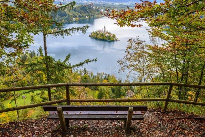 Панорамный кровоточенный вид на озеро, Словения стоковая фотография rf