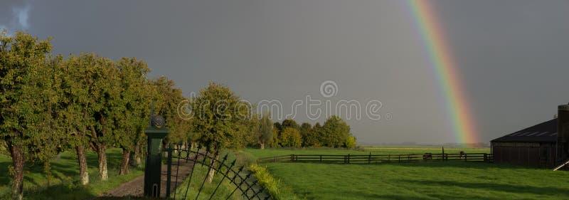 Панорамный пейзаж с радугой на сельскохозяйственных землях в Вердене, Нидерланды стоковая фотография