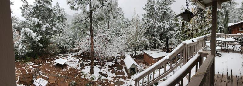 Пано на заднем дворе в первом снегу Бесплатное  из Общественного Достояния Cc0 Изображение