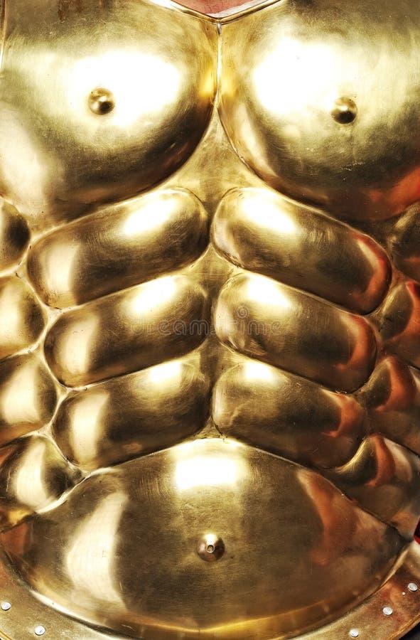 панцырь золотистый стоковое изображение rf