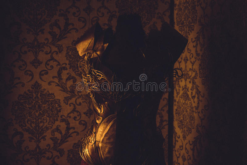 Панцырь нагрудника металла женщины сильного handmade в золоте с идет стоковые фото