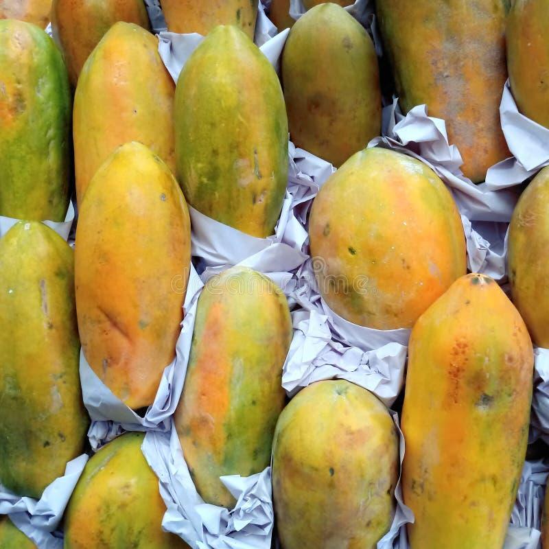 папапайи стоковая фотография rf