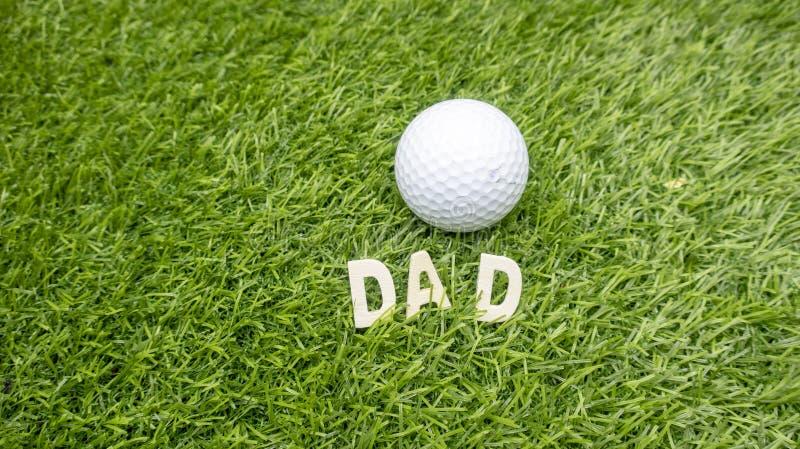 ПАПА гольфа на зеленой траве стоковые изображения rf