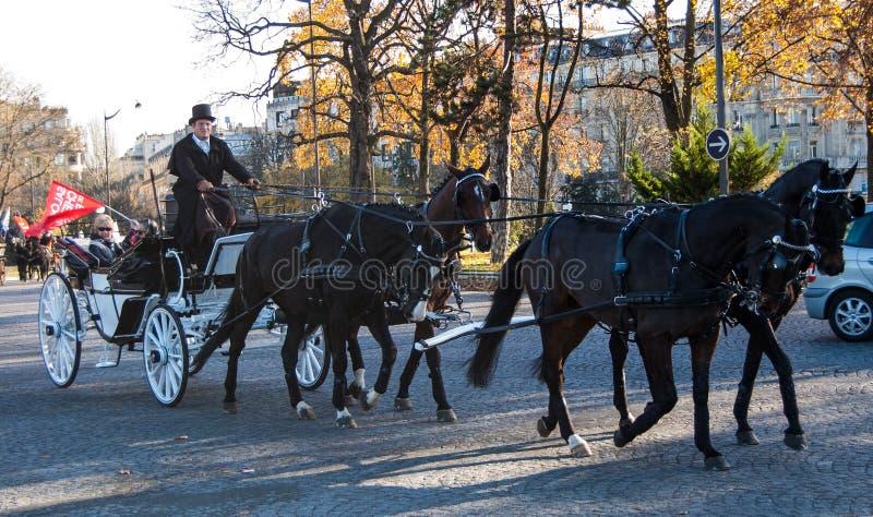 Парад лошади Париж стоковое фото