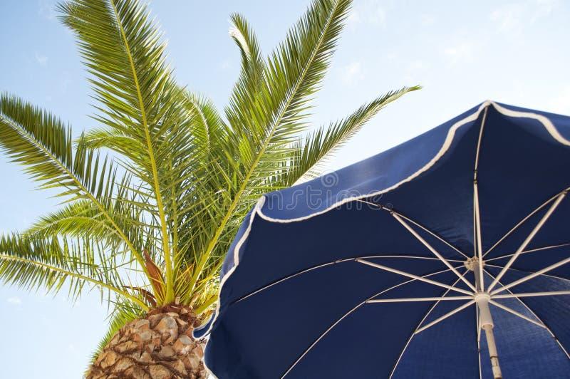 Парасоль и пальмы против тропических голубых небес стоковое изображение