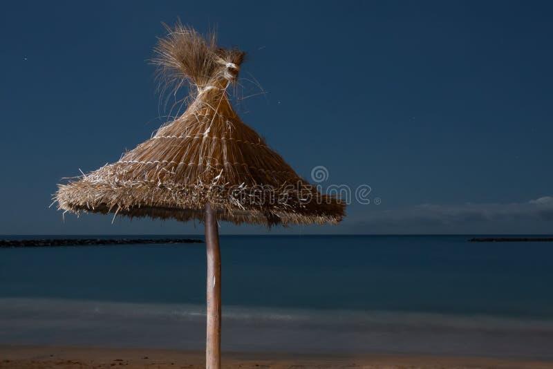 Парасоль ладоней на пустом пляже на nighttime стоковая фотография