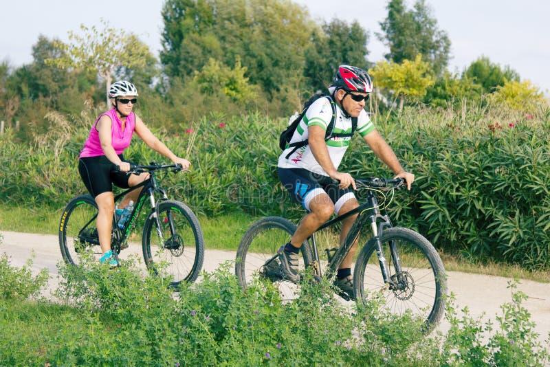 Пара велосипедистов Mature на прогулке в парке стоковое изображение rf