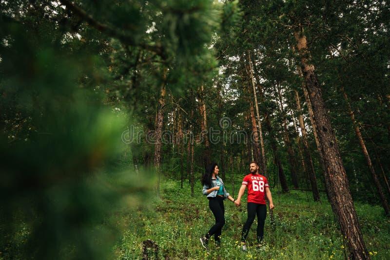 Пара в прогулках любов через coniferous лес стоковая фотография