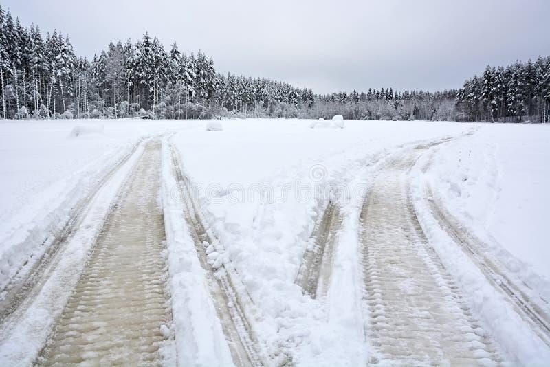 Пара следов снегохода стоковая фотография rf