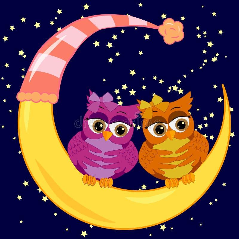 Пара ярких сычей сидит на серповидной луне в небе ночи звездном Надпись в небе вполне звезд ваше имя иллюстрация вектора