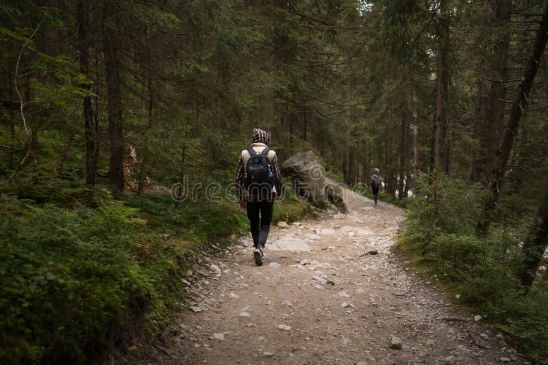 Парень идя на горную тропу стоковое фото rf