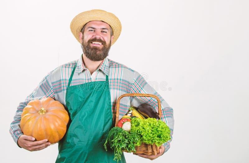 Парень-фермер носит большую тыкву Местно выращенные продукты Местная ферма Профессионализм фермеров Сельское хозяйство и стоковая фотография