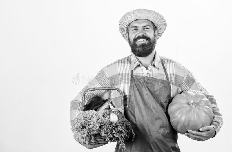 Парень-фермер носит большую тыкву Местно выращенные продукты Местная ферма Профессионализм фермеров Сельское хозяйство и стоковые изображения
