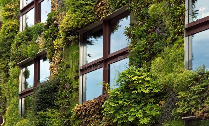 Париж - зеленая стена на части экстерьера Quai Branly Mu стоковое изображение rf