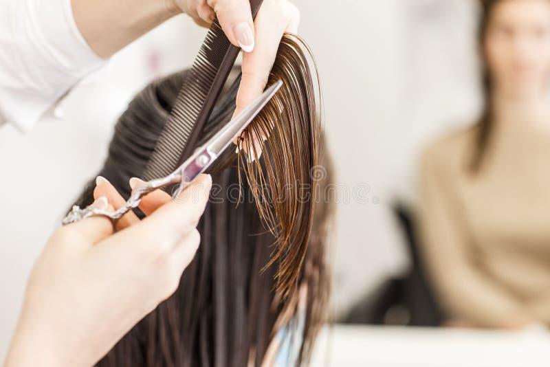 парикмахер волос вырезывания вручает женщину инструментов s Руки с гребнем и ножницами стоковые изображения rf