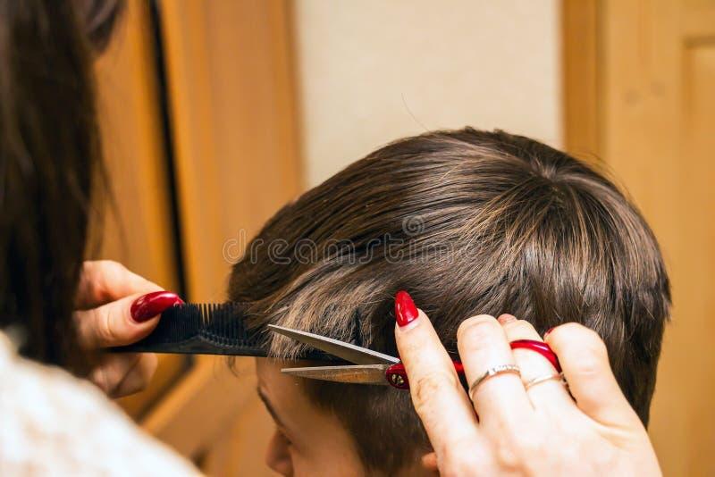 Парикмахер женщины режет мальчика стоковое изображение rf