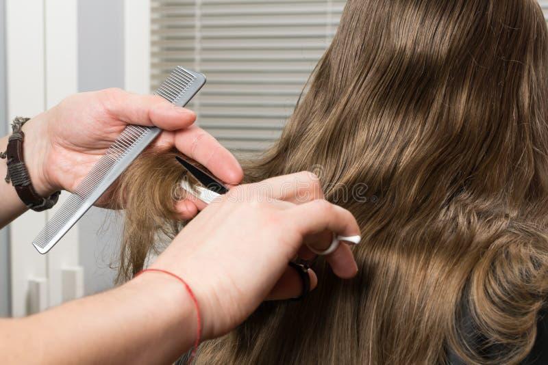 Парикмахер режет длинные волосы с ножницами, конец-вверх позади стоковые изображения