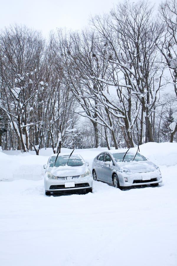 Download Парк автомобилей с горой снега Стоковое Изображение - изображение насчитывающей outdoors, блицкрига: 81815285