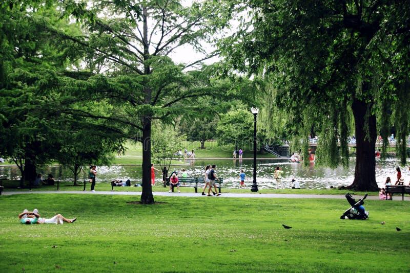 парк воскресенье стоковые изображения