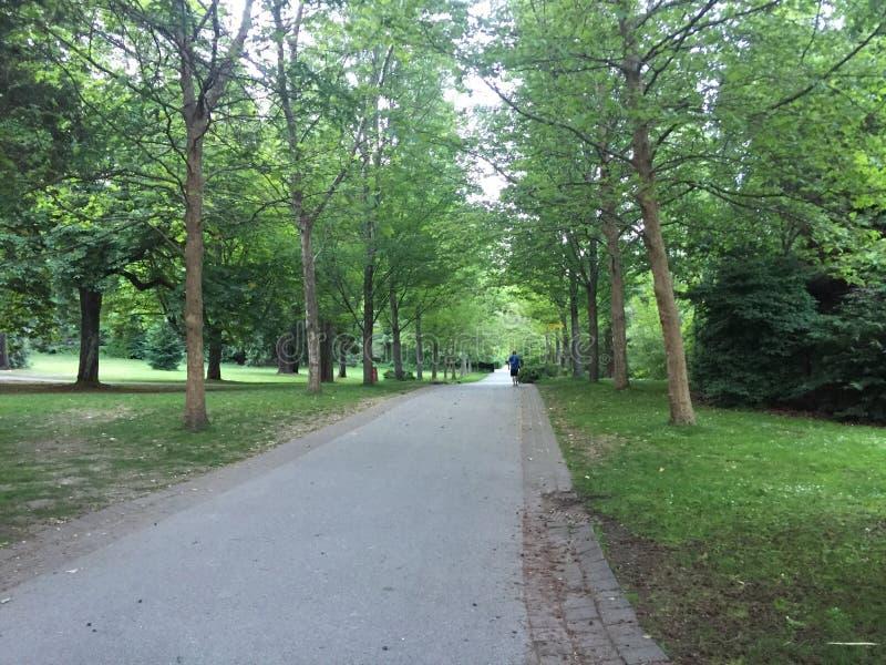 Парк в Ванкувере стоковое изображение