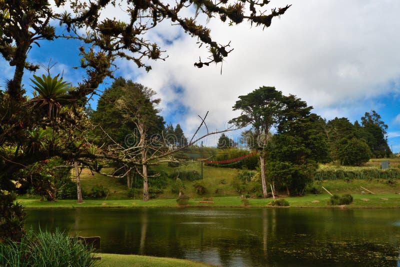 Парк в Коста-Рика стоковое фото rf