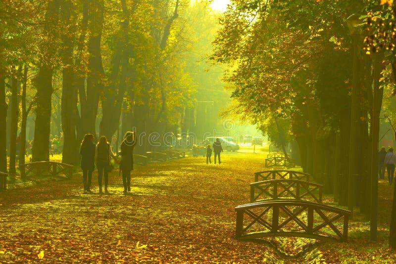 Парк в cluj-Napoca стоковое изображение rf