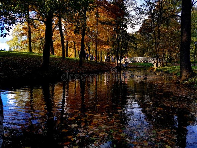 Парк в Gatchina стоковое изображение rf