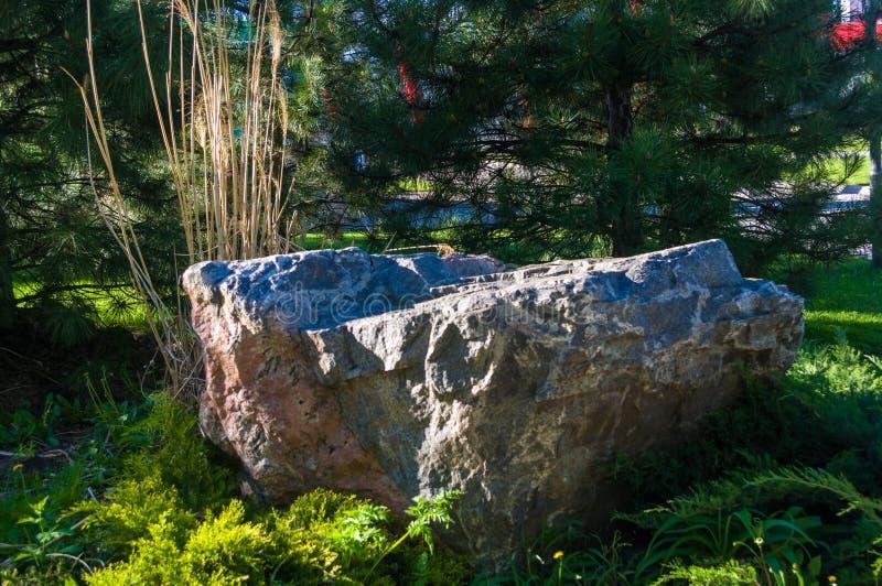 Парк города весны стоковая фотография rf