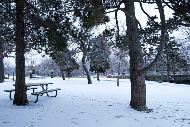 Download парк города снежный стоковое фото. изображение насчитывающей оголенности - 18378258